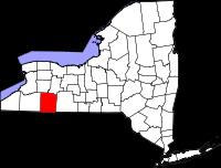 NYS outline with counties (allegany highlighted)